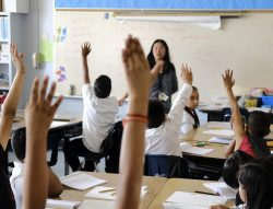 Students eagerly raise hands